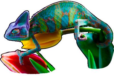 camaleon-psicologia-del-color2